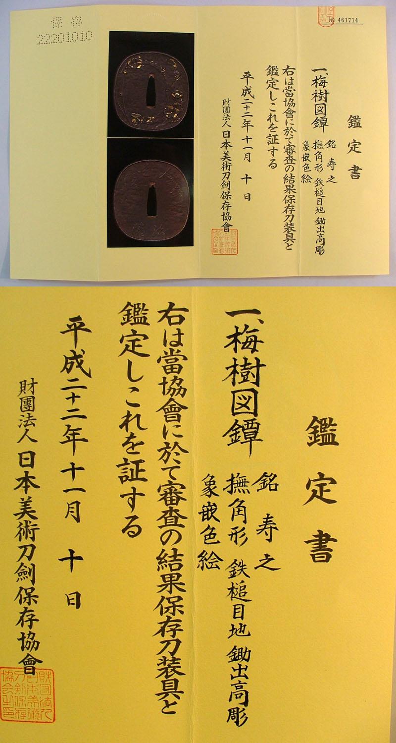 梅樹図鐔 寿之鑑定書画像